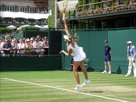 Grass Court