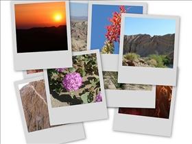 Picasaweb.com