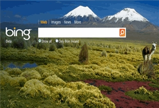 Bing Search Algorithm